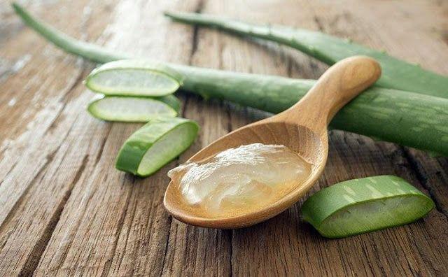 H Beauty On The Duty μοιράζεται μαζί μας όλα όσα πρέπει να ξέρουμε για το θαυματουργό gel της Aloe Vera και 8 διαφορετικούς τρόπους χρήσης της.
