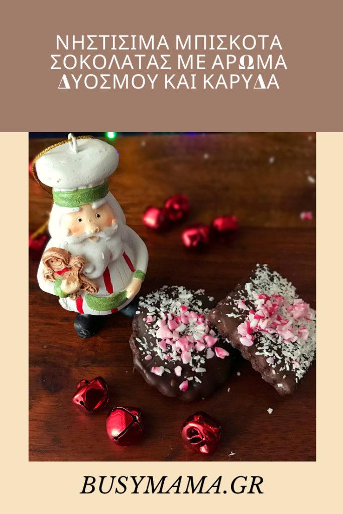 Νηστίσιμα μπισκότα σοκολάτας με άρωμα δυόσμου και καρύδα